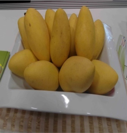 Philippines Breaks Ground in Germany's Fruit Logistica ...